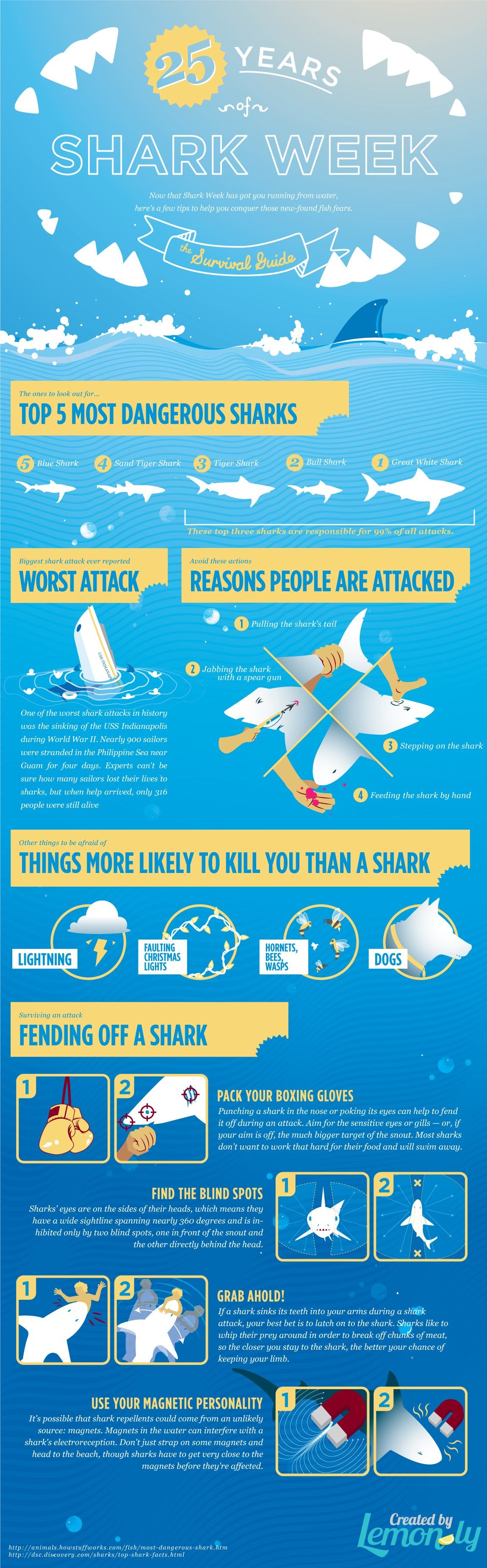 Shark Week Part 2: A Shark Survival Guide