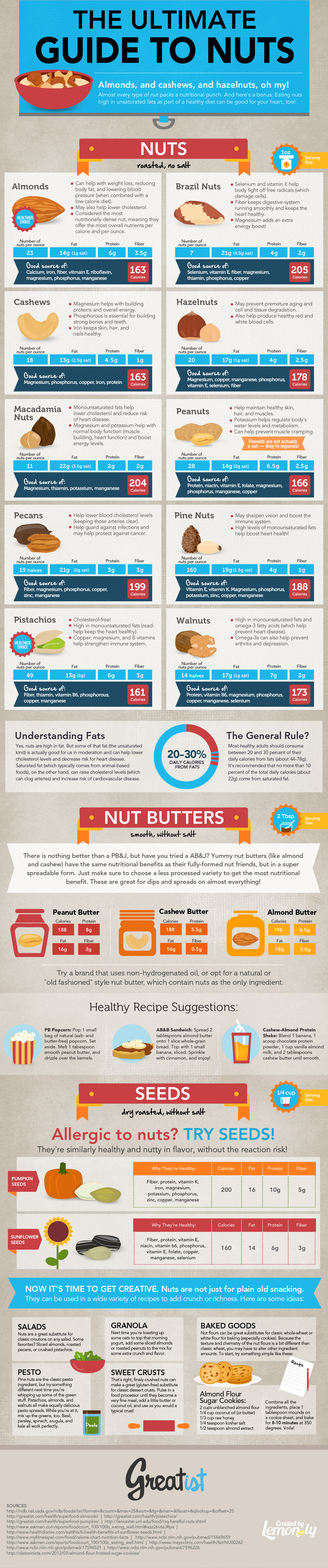 The Ultimate Guide To Nuts | Best Food Infographics