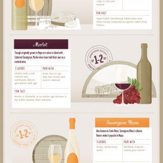 Napa Wine Pairings Guide