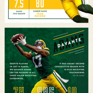 2017 Packers Season Review